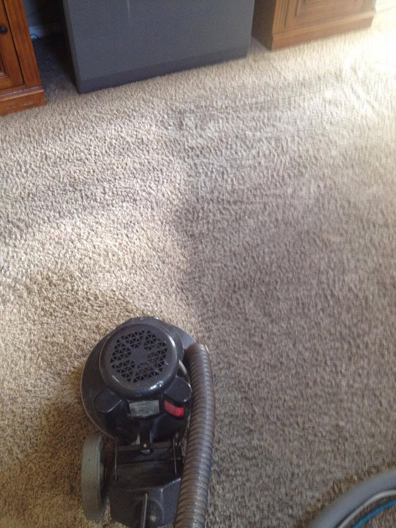Deep pile carpet cleaning